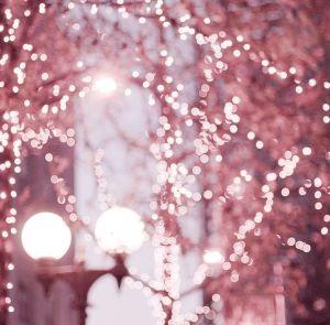 PinkLightscrop