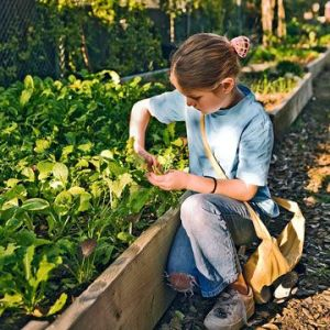 teaching our children to garden