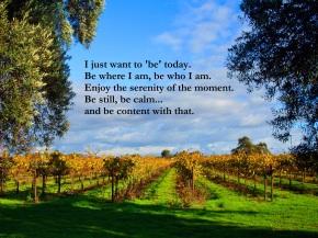 contentment, stillness, serenity