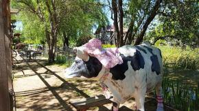 Flower Farm Cow