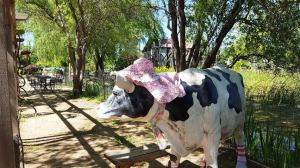 Flower Farm Cow