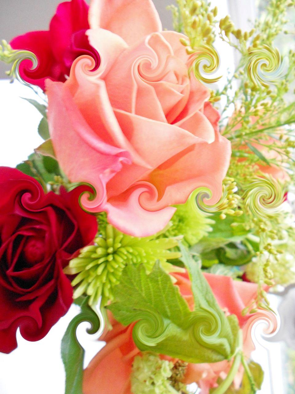 Dawns Flowers curl1
